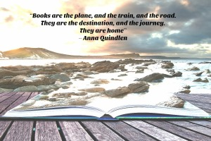 Anna Quindlen quote graphic books are the road