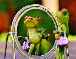 frog-mirror-1499068_1280